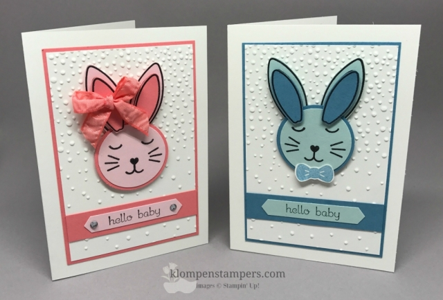 Alternate Notecards made using the March Paper Pumpkin stamps. Each month I share lots of additional alternate ideas with my subscribers. Subscribe today so you don't miss another fun kit.