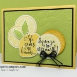 New Video–Tips For Stamping With the Lemon Zest Bundle