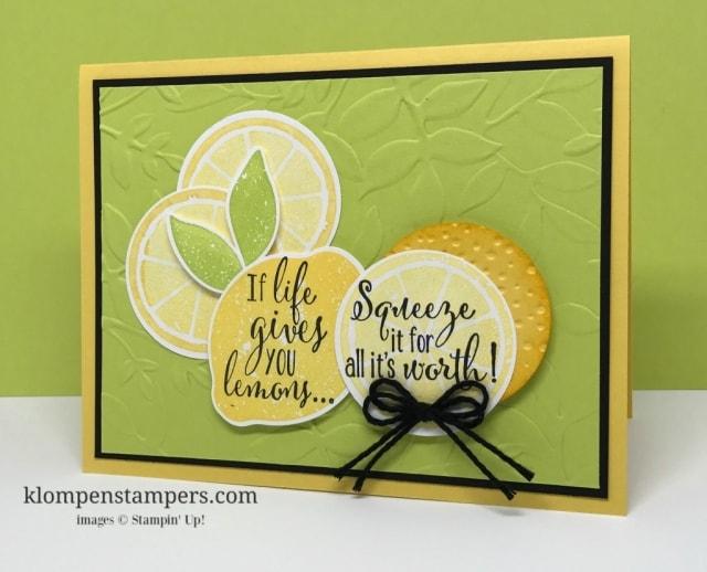 Video filled with tips for stamping with the Lemon Zest Bundle. How to get lots of texture and dimension in your projects--quickly and easily.