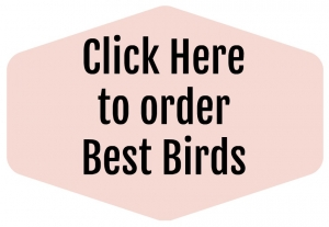 Best Birds Online Class on Sale