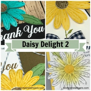Online stamping class using Daisy Delight stamp set from Stampin' Up!