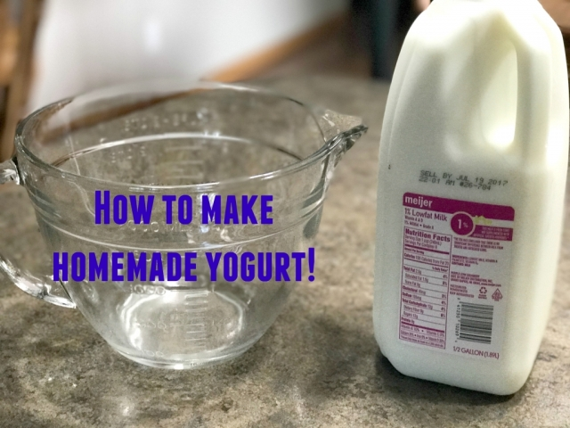 Instructions for making homemade yogurt--it's super easy! and yummy!