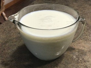 How to make homemade yogurt. Its easy!