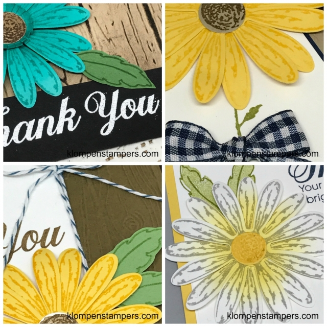 Online stamping class using Daisy Delight stamp set and punch. Complete tutorial and video with tips for making 4 unique cards.