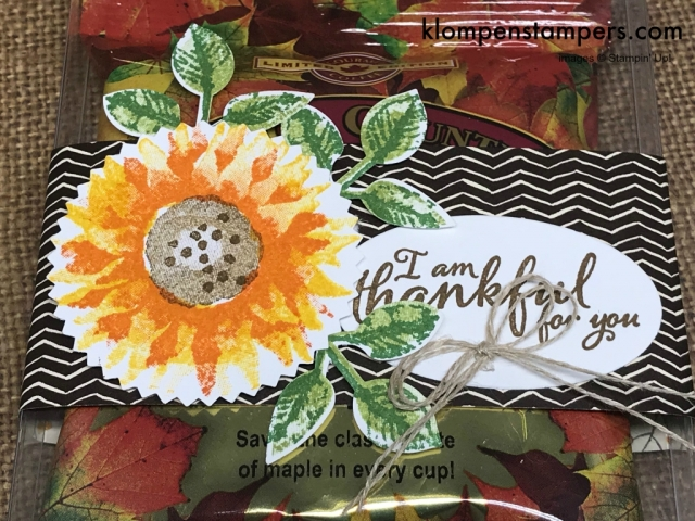 Cute (and easy) gift for someone special using Acetate Card Boxes & Painted Harvest stamp set from Stampin' Up!