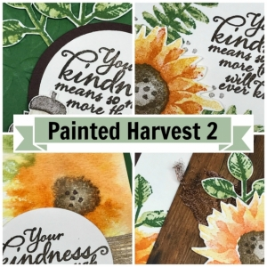Painted Harvest online stamping class and card kit.