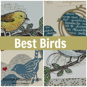 Best Birds Card Collection Tutorial and Video