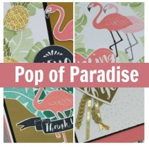 Pop of Paradise Card Collection Tutorial and Video