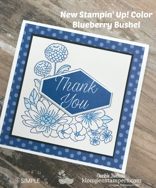Stamping Made Simple with Accented Blooms and New In-Color Blueberry Bushel