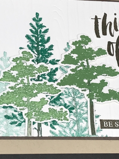 Rooted in Nature Bundle by Stampin' Up!