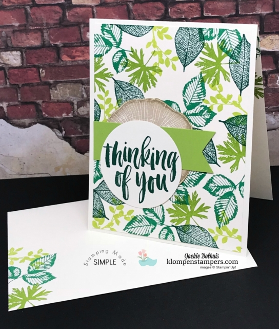 Easy Cards using Rooted in Nature Stamped Background