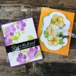 2 Ways to Color | Card Making with Blended Seasons