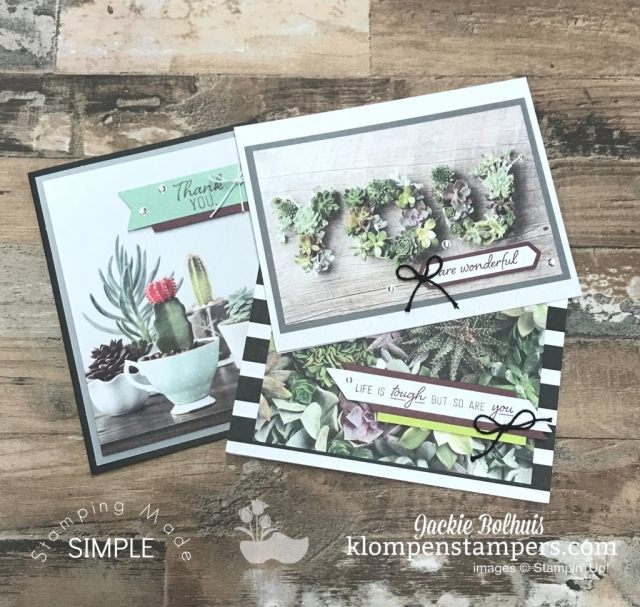 Beautiful-Handmade-Cards-from-Paper-Pumpkin-Kit-with-Greenery-and-Succulent-Plants
