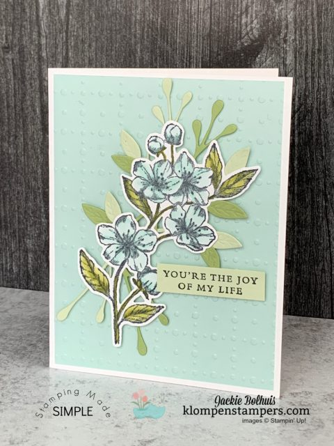 Vellum-on-greeting-cards-pool-party-colored-vellum-cardstock