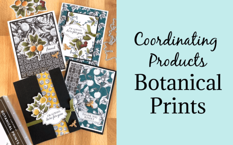 How to Create Greeting Cards with Coordinating Products